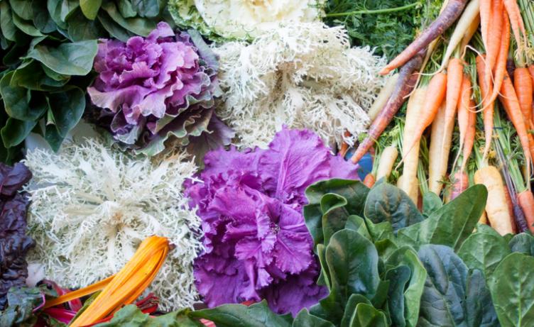 Curso Online de Alimentación Vegetariana y Vegana saludable en abril