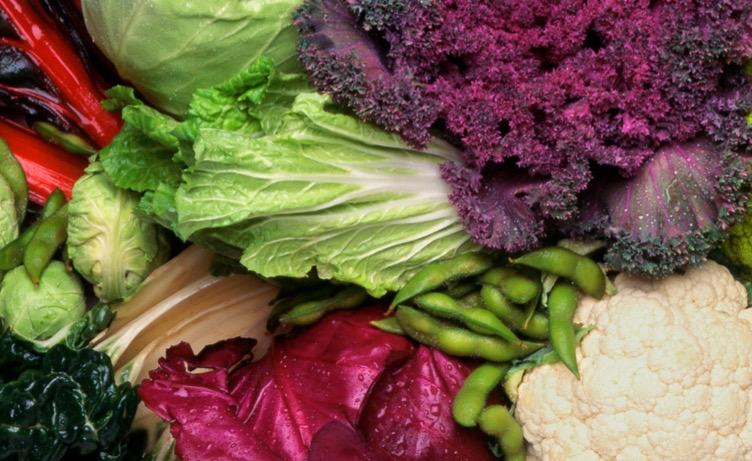 Curso Online de Alimentación Vegetariana y Vegana saludable en mayo