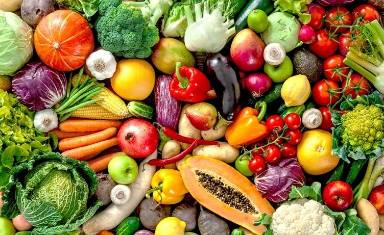 Curso intensivo Online de Alimentación Vegetariana y Vegana  en agosto